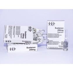 HD Amp Sustenon 250 / Amp